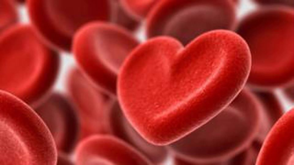 colesterol, níveis, partir, pesquisadores, necessário, idade, acordo, dessa, calcular, possível, afirmam, fazer, ficar, ideal, checagem, desde