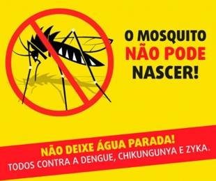 Combate ao Aedes pode ser mais eficiente durante o frio