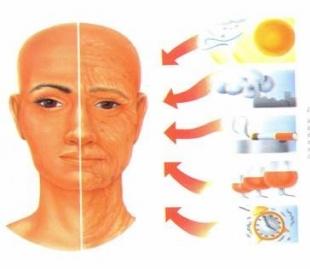 Pesquisas da USP estudam uso de proteína contra envelhecimento