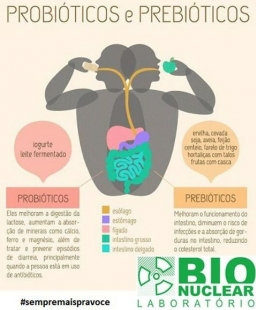 Probióticos e Prebióticos: Os aliados da saúde intestinal