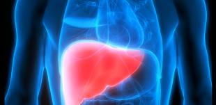 O que são as hepatites virais?