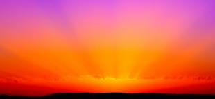 Roxo e laranja são as cores de fevereiro
